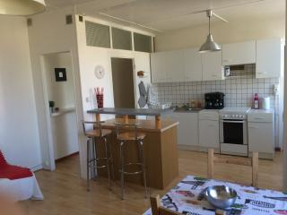 Nice Condo with Television and Microwave - Saint-Étienne vacation rentals