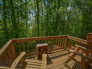 Alluring 2 Bedroom Ski In/ Ski Out Townhome w/ Hot tub! - McHenry vacation rentals