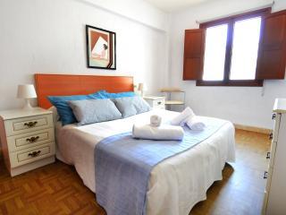 Lovely 4 bedroom Condo in El Arenal - El Arenal vacation rentals