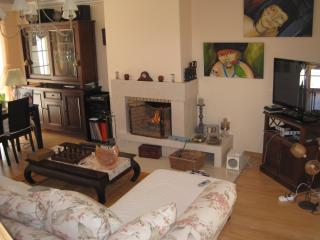 Cozy 3 bedroom House in Caldas da Rainha with Internet Access - Caldas da Rainha vacation rentals