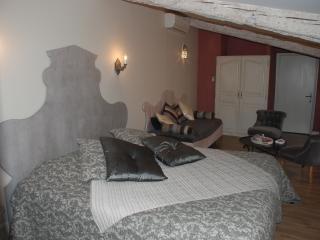 LE PASSAGE CARCASSONNE Chambre d'hôte de charme - Carcassonne vacation rentals
