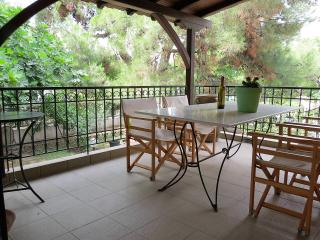 House in the Center of Nikiti with Private Yard - Nikiti vacation rentals