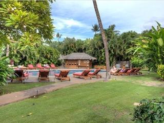 Aina Nalu Resort Combo - w/ pool, jetted spa - Lahaina vacation rentals