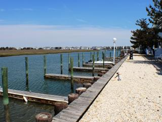 Royal Bay Condo 11 - Spacious Bayfront! - Avalon vacation rentals