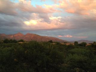 Fantastic Mountain Views, Elegantly Remodeled, Enhanced Privacy !! - Tucson vacation rentals