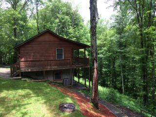 Fancy Gap Hideaway Black Bear Cabin - Fancy Gap vacation rentals