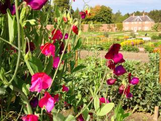 Gordon Castle Garden Cottage, WiFi - Fochabers vacation rentals