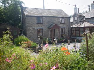 'Tyddyn Llan cottage 4* Tourist Board Graded.' - Eglwysbach vacation rentals