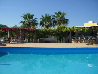 Perfect 4 bedroom Finca in Algaida - Algaida vacation rentals
