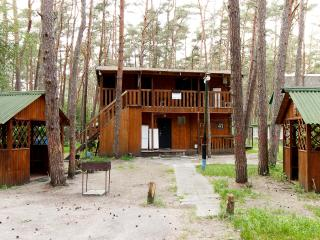 Bright 12 bedroom Apartment in Lesnoye - Lesnoye vacation rentals