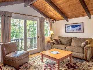 Convenient 2 bedroom Chalet in Bartlett - Bartlett vacation rentals