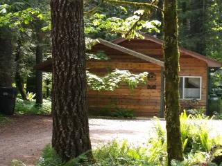 Vine Maple House, Private Hot Tub, Pet Friendly - Ashford vacation rentals