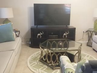 Cozy Condo with Internet Access and A/C - Clearwater vacation rentals