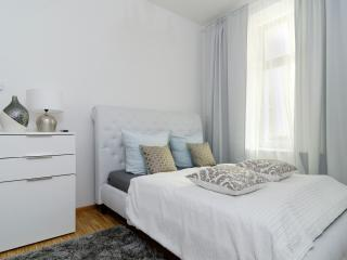 1.Great Central City Apt. 2 ROOM - Berlin vacation rentals
