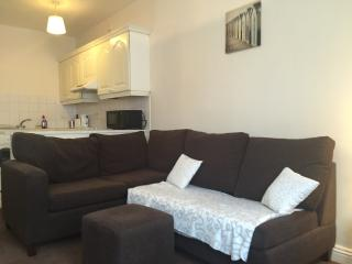 Nice Condo with Internet Access and Wireless Internet - Dublin vacation rentals