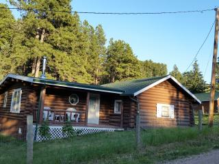2 Bedroom Cabin less than a mile from Deadwood! - Sturgis vacation rentals