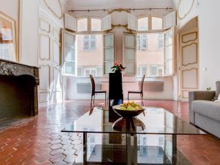 Majestueux aixois Hôtel particulier old town - Aix-en-Provence vacation rentals