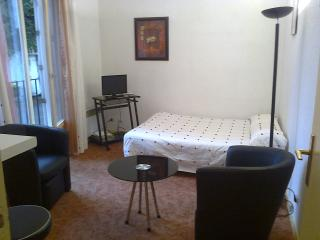Nice Condo with Washing Machine and Television - Pau vacation rentals