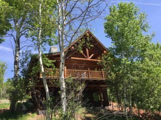 Cozy Cabin with Television and Satellite Or Cable TV - Basalt vacation rentals