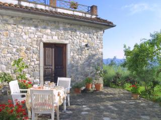 "Traditional village home ""Agriturismo Forni Rosaia - Olivola vacation rentals"