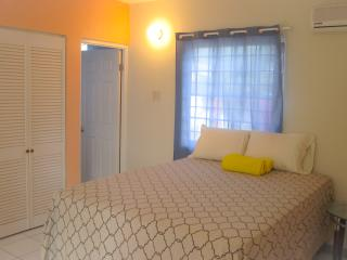 University area 1 bedroom apartment - Kingston vacation rentals