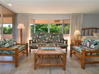 Maui Eldorado: Maui Condo G201 - Ka'anapali vacation rentals