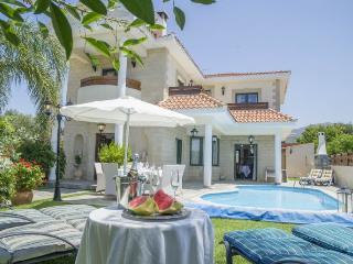 Bright 4 bedroom Villa in Nea Dimmata with Internet Access - Nea Dimmata vacation rentals
