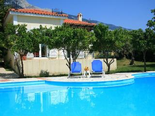 Comfortable Villa with Internet Access and A/C - Vlachata vacation rentals
