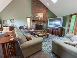 Asheville private cedar lodge eye-popping vistas - Asheville vacation rentals