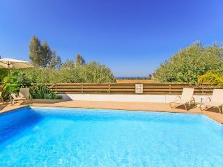 Spacious 4 bedroom Villa in Nea Dimmata - Nea Dimmata vacation rentals