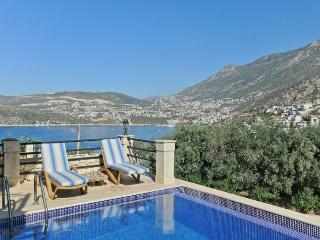 Comfortable Villa with Internet Access and A/C - Unye vacation rentals