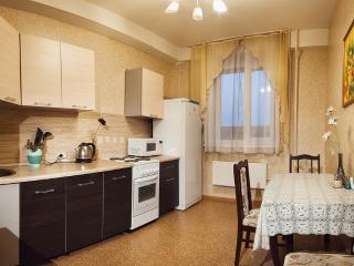 Bright 1 bedroom Perm Condo with Internet Access - Perm vacation rentals