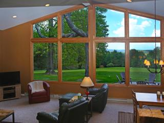 Valley View Cottage, Secluded, Outdoor Pizza Oven, Solar Tree House, Firepit - Perrysville vacation rentals