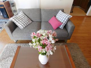 LCT Charming city apartment - Split vacation rentals