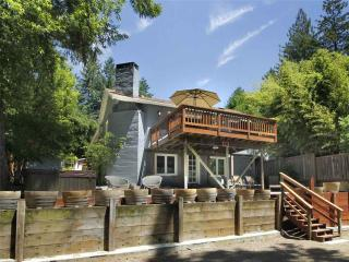 Gorgeous 2 bedroom House in Guerneville - Guerneville vacation rentals