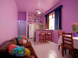 Belíssimo Apartamento Um Quarto na Urca - Rio de Janeiro vacation rentals