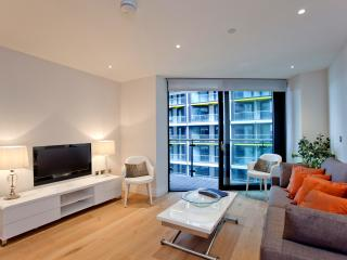 STUNNING RIVER SIDE APARTMEWNT WITH POOL and GYM - London vacation rentals