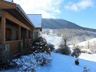 Spacious, Elegant Home with Hot Tub, Outdoor Kitchen, WiFi and More! - West Jefferson vacation rentals