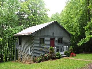 Cabin Near New River State Park With WiFi, Fireplace! - Crumpler vacation rentals