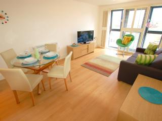 Tower Bridge/Bermondsey Apartment - London vacation rentals