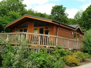Luxury lodge on peaceful rural Holiday park - Prudhoe vacation rentals