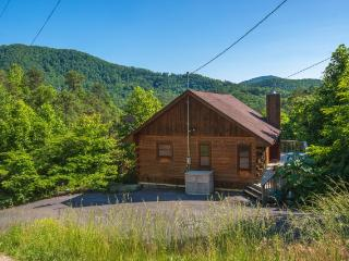 Bear Paw Lodge - Sevierville vacation rentals