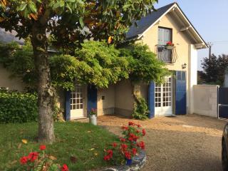 Dans longére des Bords de Loire - La Bohalle vacation rentals
