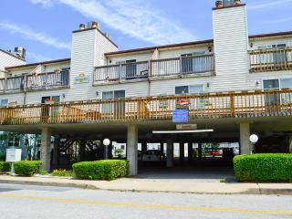 Cinnamon Teal 9 - Ocean City vacation rentals