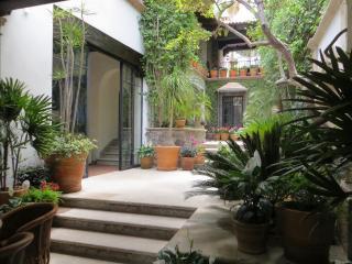 Comfortable 3 bedroom House in San Miguel de Allende - San Miguel de Allende vacation rentals