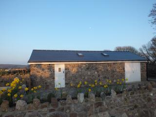 Wonderful Bungalow with Internet Access and Parking - Llangennith vacation rentals
