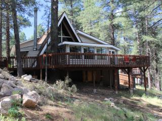 Pine View Lodge- Phenomenal family Experience - Flagstaff vacation rentals