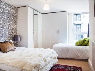 HSH Canary London II - London vacation rentals