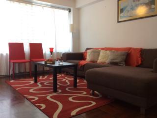 DEPARTAMENTO EN SAN ISIDRO hasta 4 personas - Lima vacation rentals