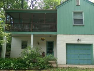 Miller Beach Tree House in Indiana Dunes - Gary vacation rentals